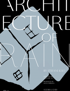 Poster of Architecture of Rain