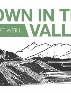 Poster of Down in the Valley
