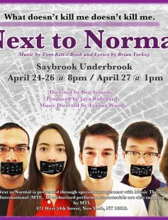 Poster of Next to Normal