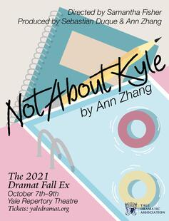 Poster for Not About Kyle