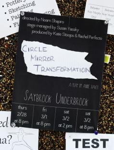 Poster of Circle Mirror Transformation