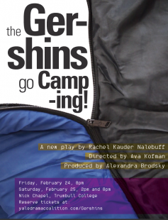 Poster of The Gershins Go Camping