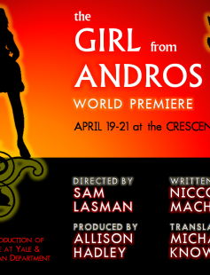 Poster of The Girl From Andros