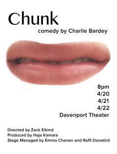 Poster of Chunk