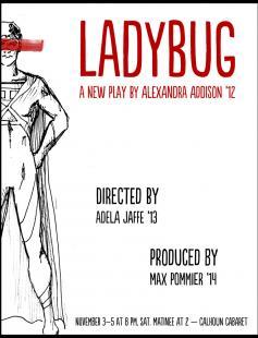 Poster of Ladybug