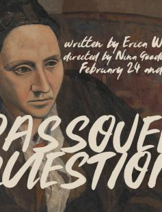 Poster of The Passover Question