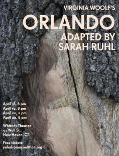 Poster of Orlando