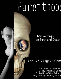 Poster of Parenthood: Short Musings on Birth and Death