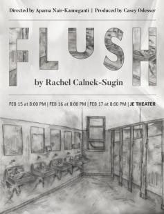 Poster of Flush