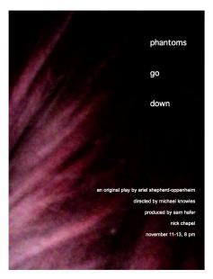 Poster of Phantoms Go Down
