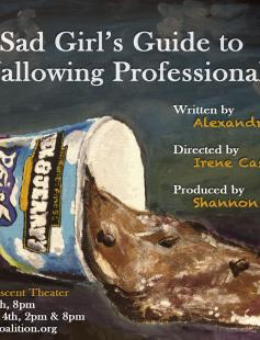Poster of The Sad Girl's Guide to Wallowing Professionally