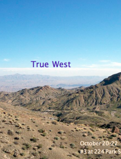 Poster of True West