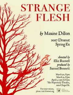 Poster of Strange Flesh