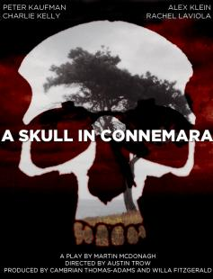 Poster of A Skull in Connemara