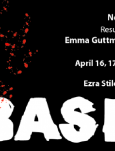 Poster of Bash
