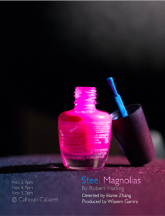 Poster of Steel Magnolias