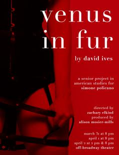 Poster of Venus in Fur