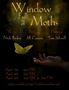 Poster of Window Full of Moths